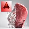 Как выглядит Autodesk AutoCAD Architecture 2014