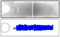 СКМ ЛП «ПолигонСофт»/«Фурье-3D». Моделирование усадочной пористости в пластине и сравнение с экспериментальными данными (К. Бекерманн)